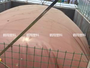 朝鲜一行6人由朝鲜驻华大使馆人员带领赴山东潍坊参观考察沼气发电项目