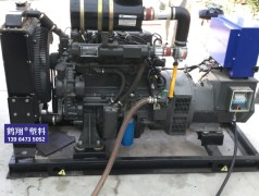沼气专用发电机